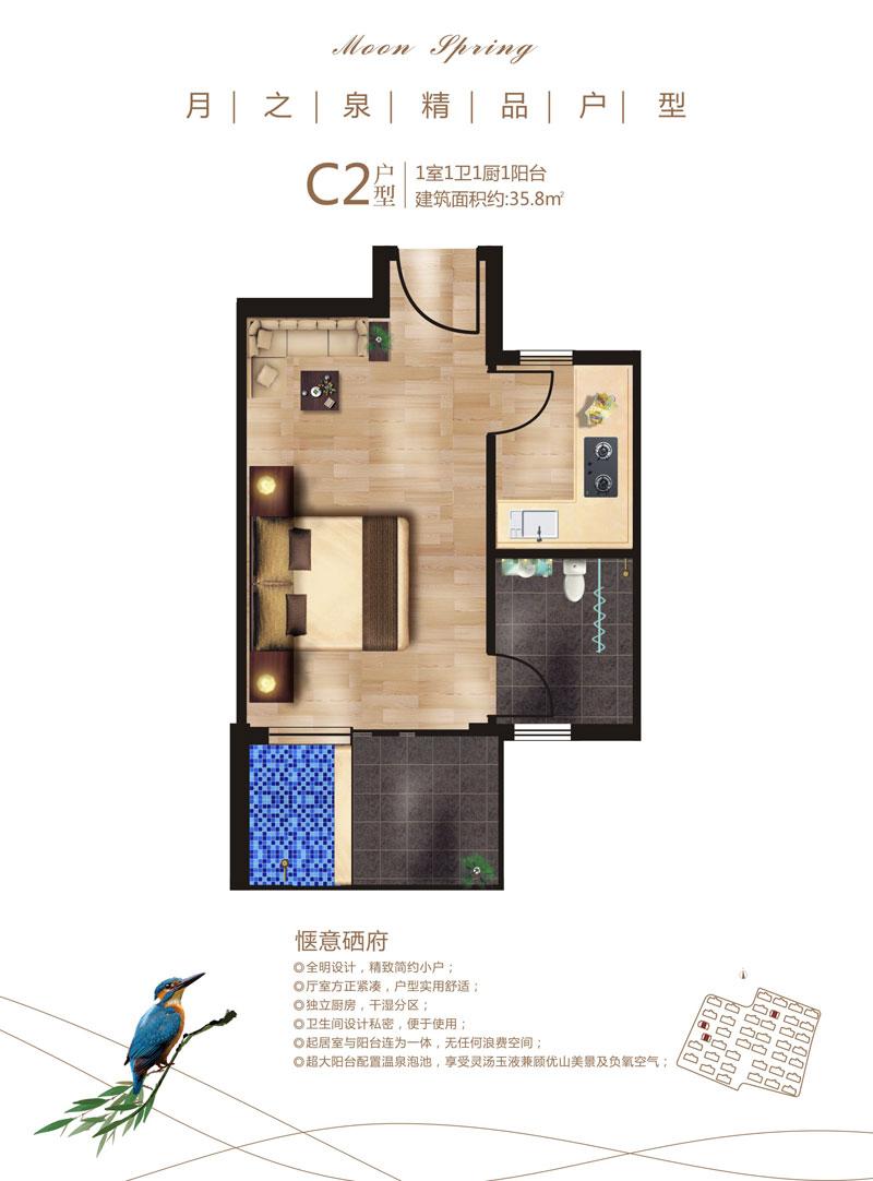 c2户型.jpg